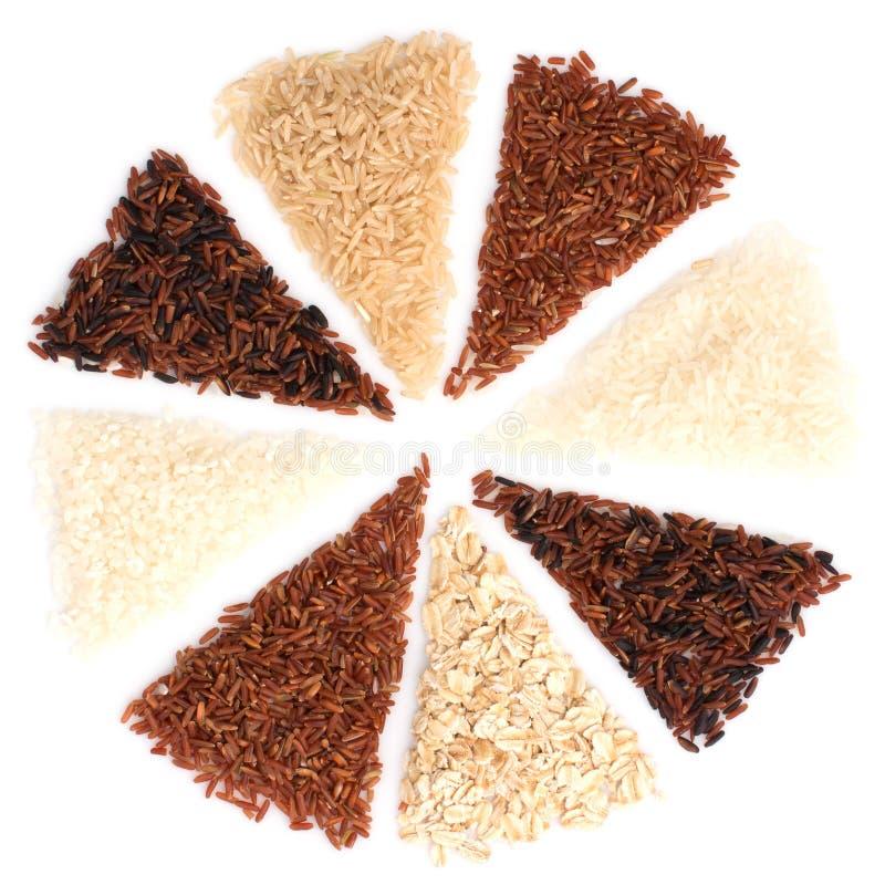 De Thaise ladingsrijst is de verwezenlijking van de Thaise rijst eaperts en Jap royalty-vrije stock foto