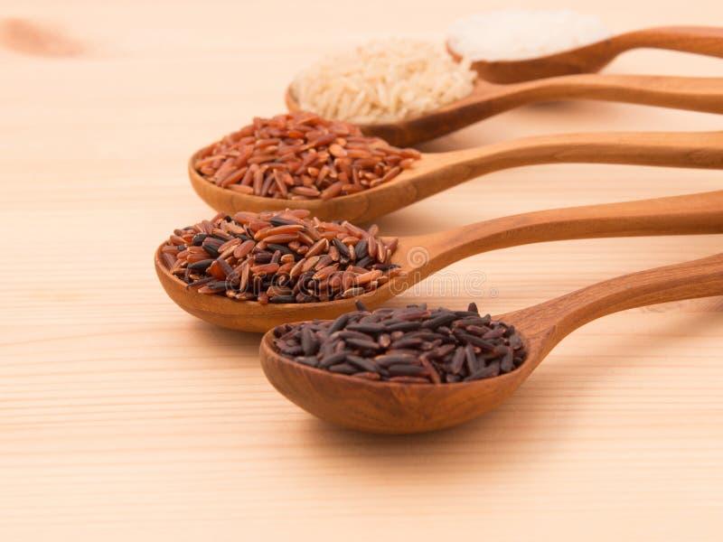 De Thaise ladingsrijst is de verwezenlijking van de Thaise rijst eaperts en Jap stock afbeeldingen
