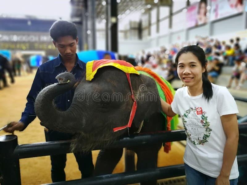 De Thaise vrouw neemt een foto met de kleine olifant in de Tropische tuin van Nongnuch stock foto