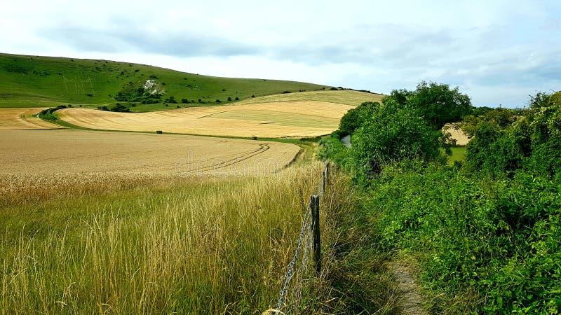 Isde TheLange Mens vanWilmingtonheuvelafigureop de steile hellingen van Windover-Heuvel nearWilmington, Oost-Sussex, stock afbeeldingen