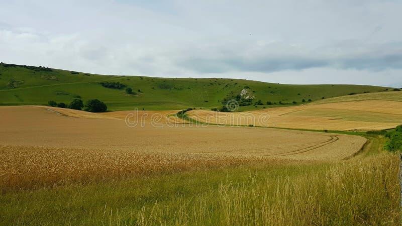 Isde TheLange Mens vanWilmingtonheuvelafigureop de steile hellingen van Windover-Heuvel nearWilmington, Oost-Sussex, royalty-vrije stock fotografie