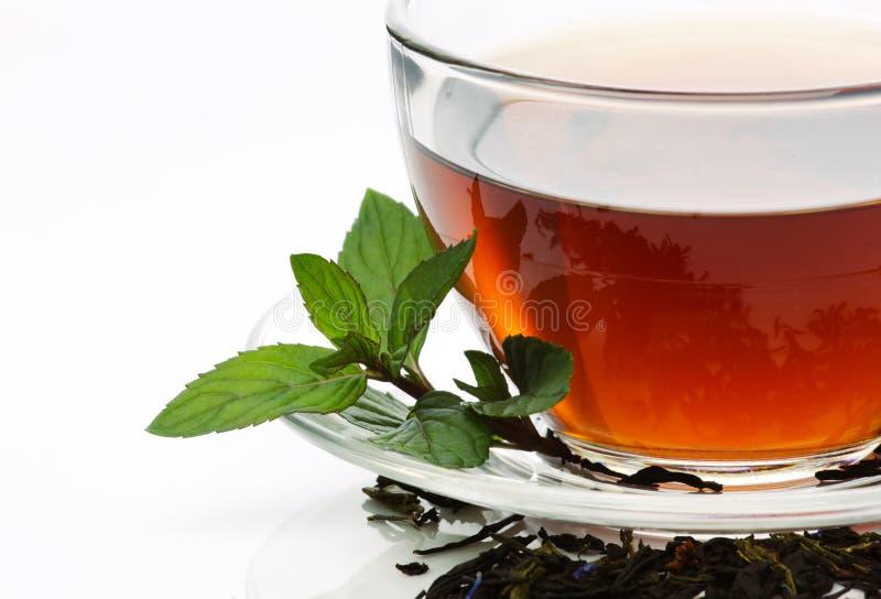 De thee met munt en droog doorbladert royalty-vrije stock foto's