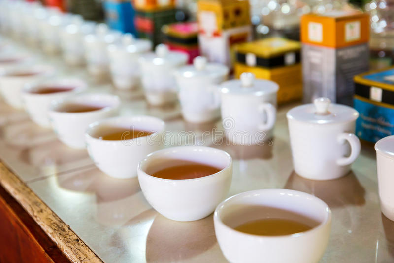 De thee proevende koppen van Ceylon, toeristenexcursie royalty-vrije stock foto's