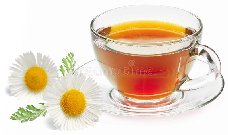 De thee van de kamille royalty-vrije stock foto's