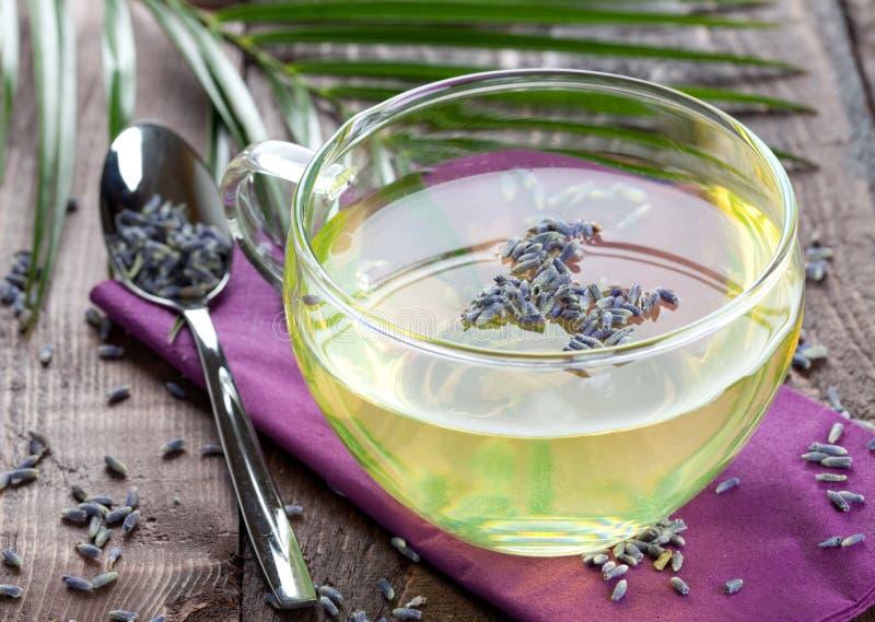 De thee van de lavendel stock afbeelding