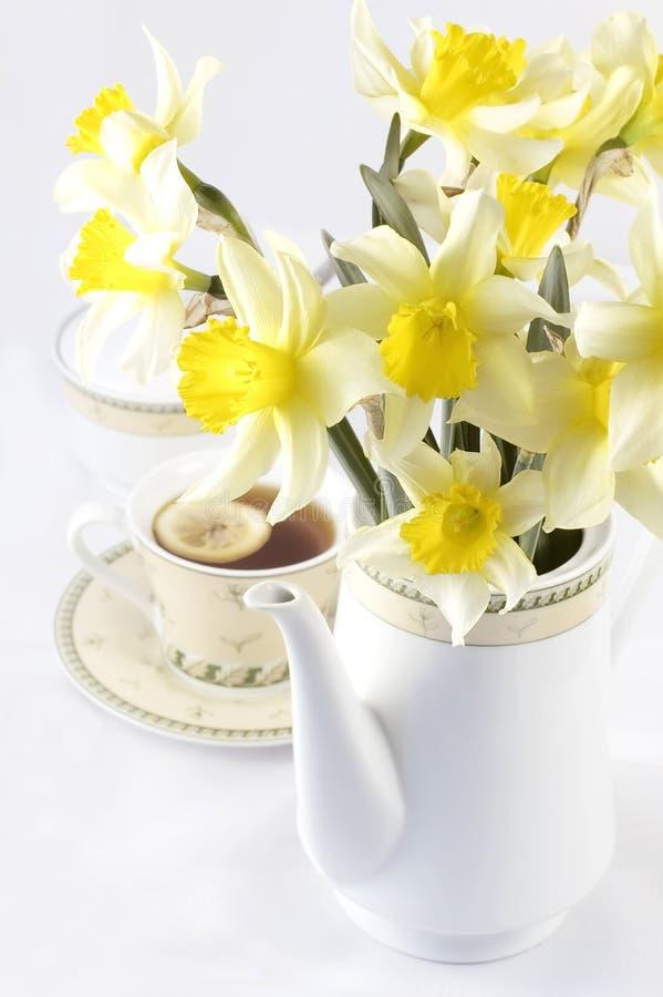 De thee van de lente met bloemen royalty-vrije stock afbeelding