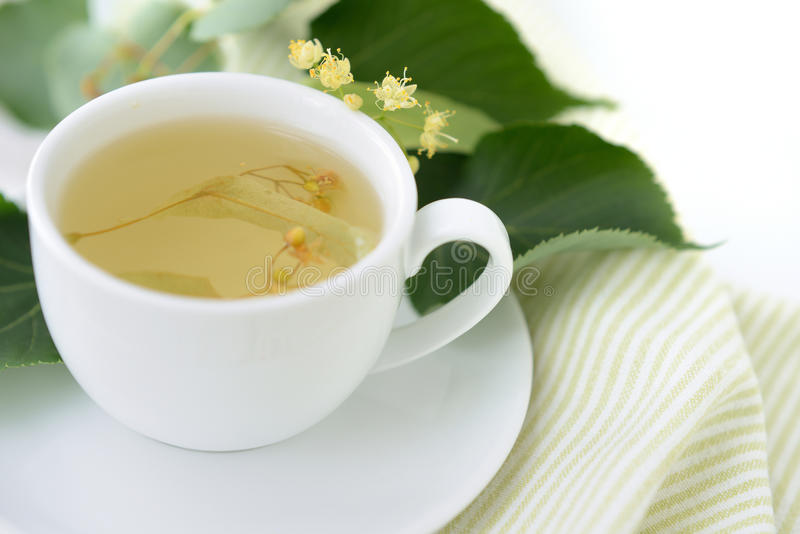 Download De thee van de linde stock foto. Afbeelding bestaande uit nave - 54089308