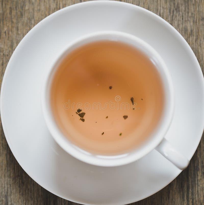 De thee van de munt royalty-vrije stock afbeeldingen