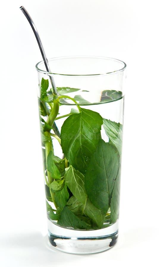 De thee van de pepermunt royalty-vrije stock afbeelding