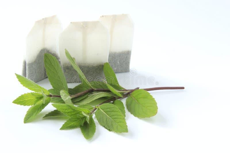 De thee van de pepermunt royalty-vrije stock foto