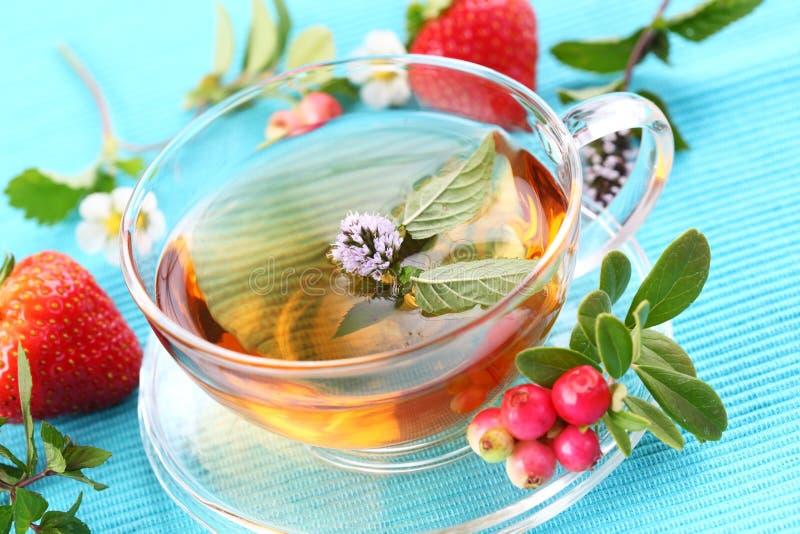 De thee van de vitaliteit stock foto's