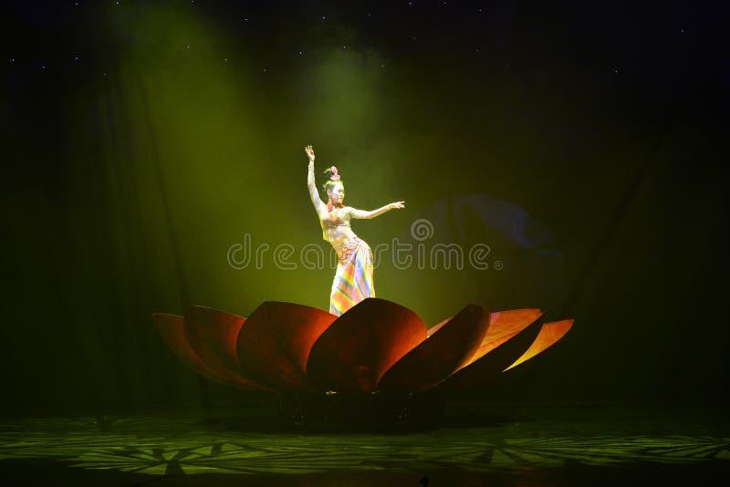 De Tibetaanse mensen het dansen nacht toont, Jiuzhaigou royalty-vrije stock afbeelding