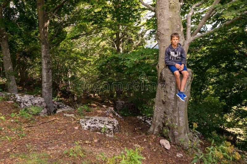 De tiener zit op een lange boom stock afbeelding