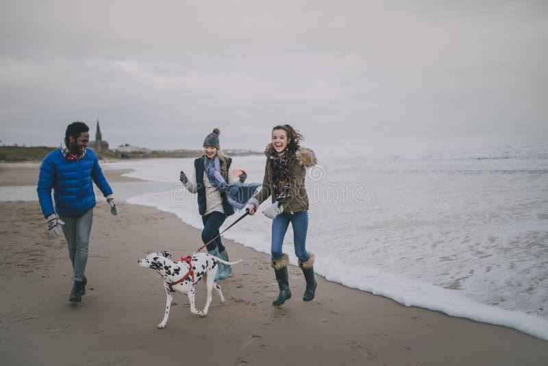 De tieners lopen Hond op de Winterstrand royalty-vrije stock foto's