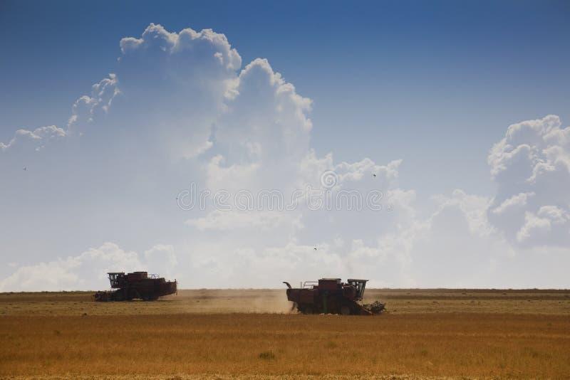 De tijd van de oogst stock afbeeldingen