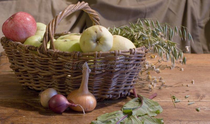 De tijd van de oogst Rijpe appel ter plaatse in een tuin van de appelboom stock afbeeldingen