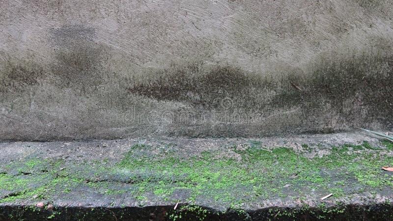 De tijd voegt mos aan het beton toe royalty-vrije stock fotografie