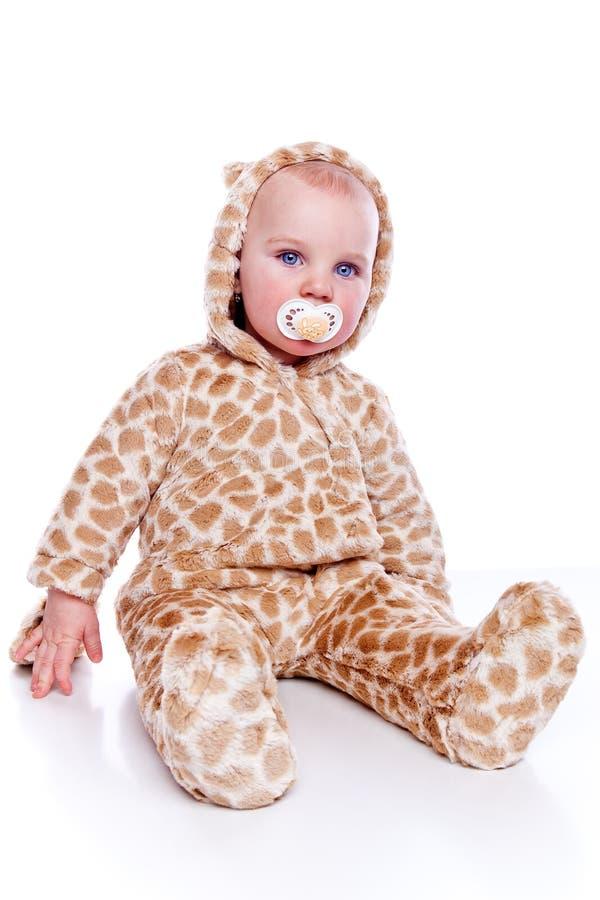 De tijger van de baby stock foto's