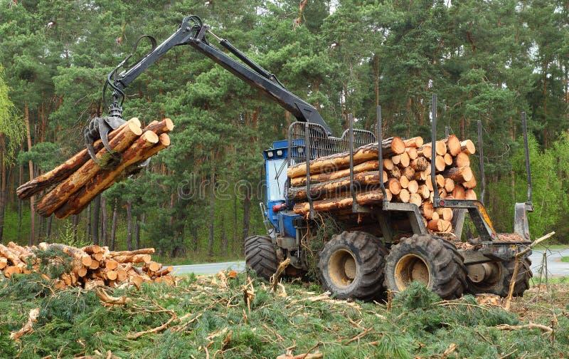 De timmerhoutindustrie. stock foto