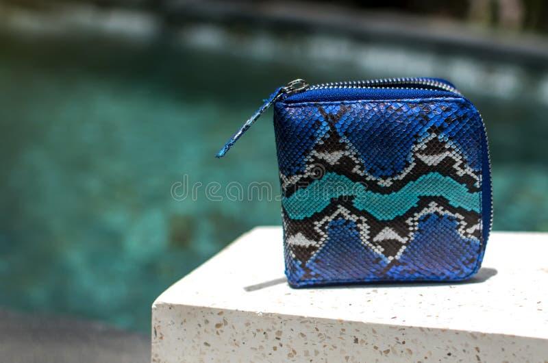De toebehoren van maniervrouwen De pythonportefeuille van luxe met de hand gemaakte snakeskin Hoogste mening, blauwe pool, licht  stock foto