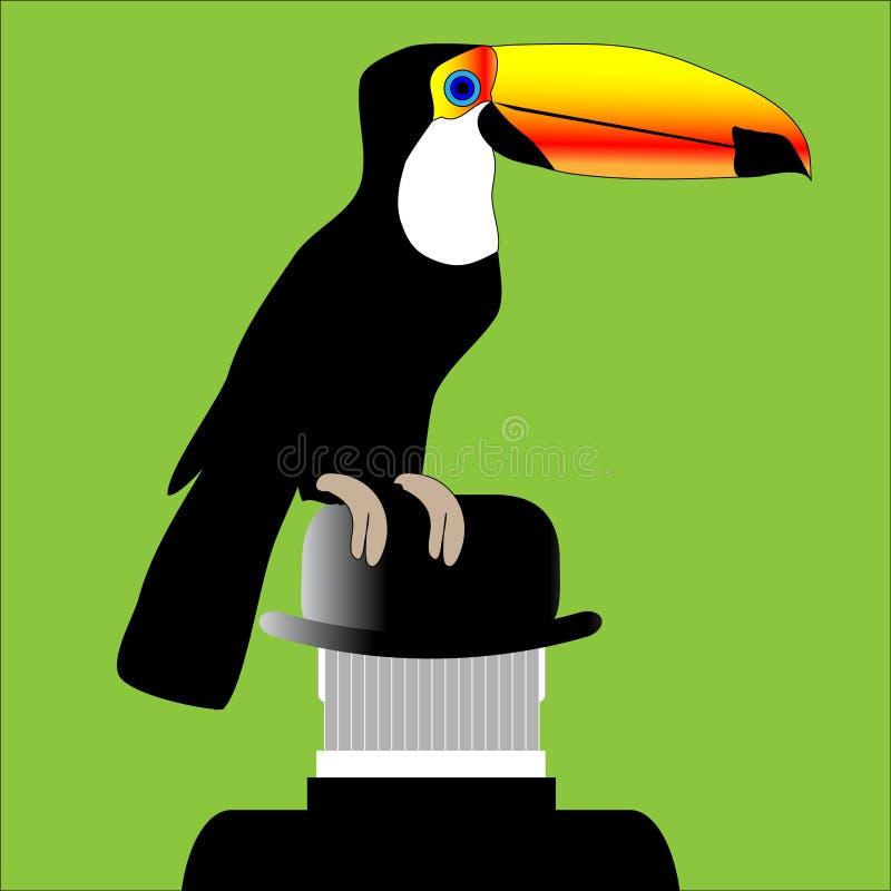 Download De Toekan En De Juiste Engelsman Vector Illustratie - Illustratie bestaande uit groen, wildernis: 107703719