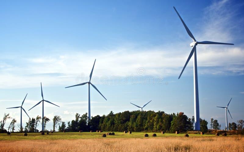 De toekomst blaast in de Wind royalty-vrije stock afbeelding