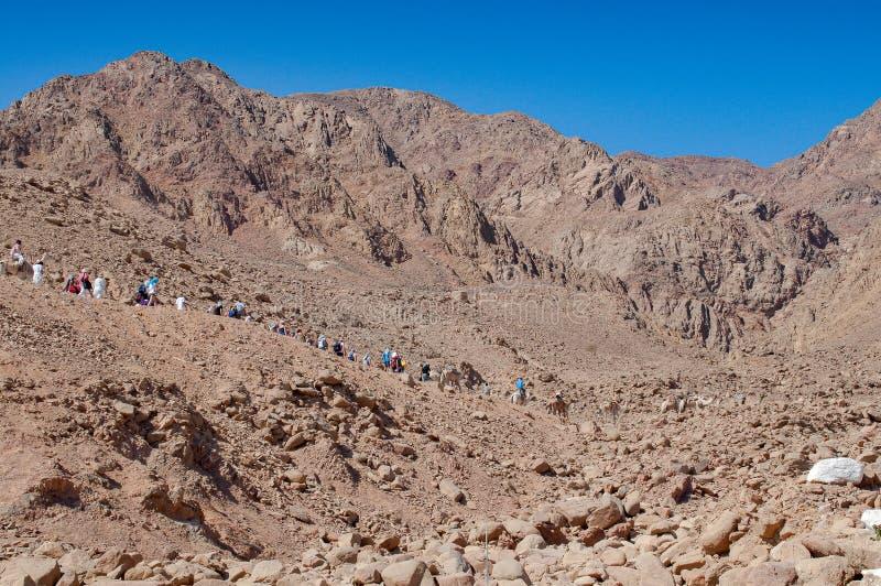 De toeristen die naar de woestijn gaan halen in bergen over dichtbij Blauw Gat in Dahab, Egypte stock fotografie