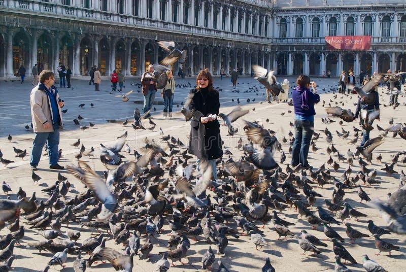 De toeristen voeden duiven bij Piazza San Marco in Venetië, Italië stock foto