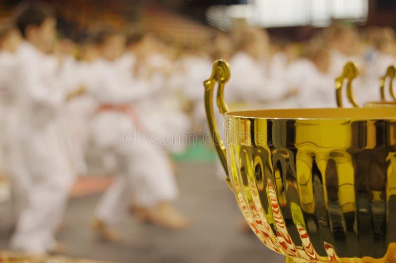 De toernooien van de karate royalty-vrije stock foto's