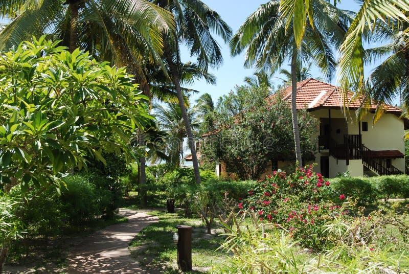 De toevlucht van Zanzibar stock afbeeldingen
