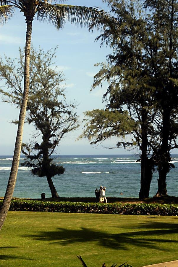 DE TOEVLUCHTbezoekers VAN HAWAII_USA_PONO KAI stock foto
