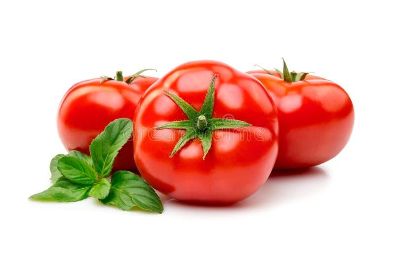 De tomaat met basilicum isoleert royalty-vrije stock afbeeldingen