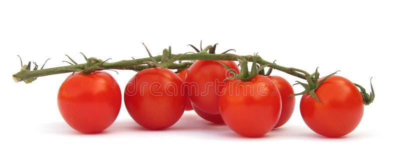 De tomaat van de kers stock afbeelding