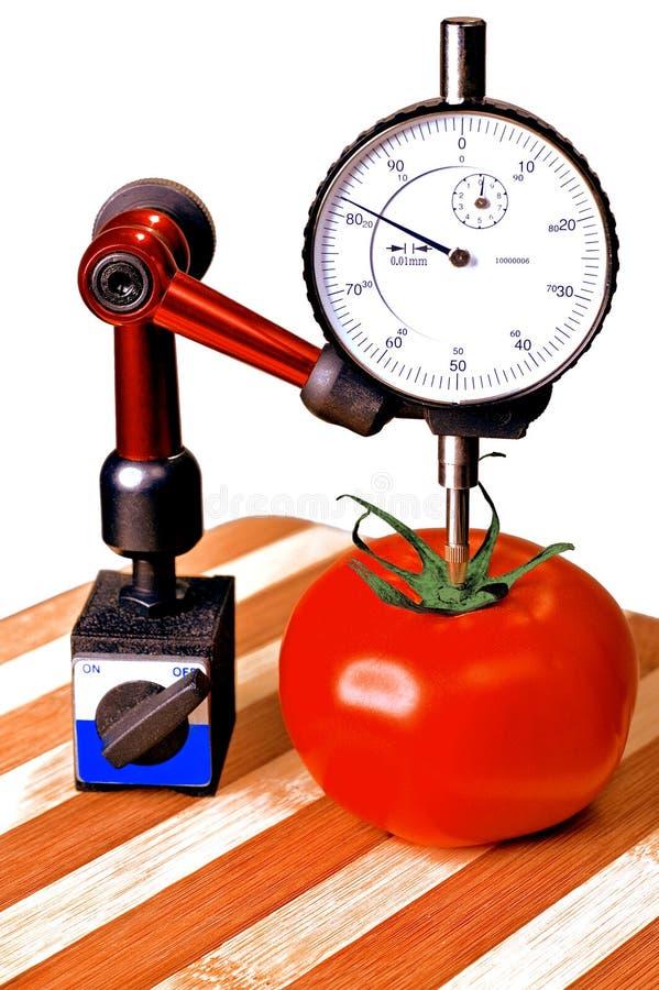 De tomaat van de precisie stock foto
