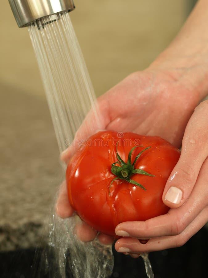 De tomaat van de was stock fotografie