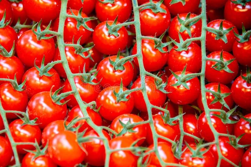 De tomaten bij de marktvertoning blokkeren stock foto
