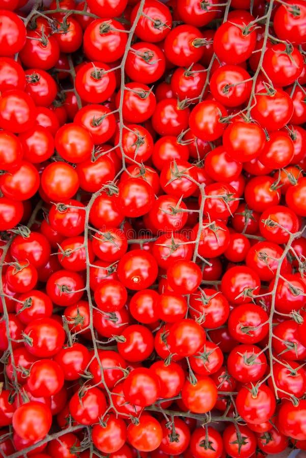 De tomaten bij de marktvertoning blokkeren stock afbeeldingen