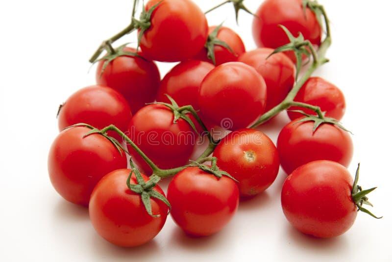 De tomaten van de cocktail stock afbeelding