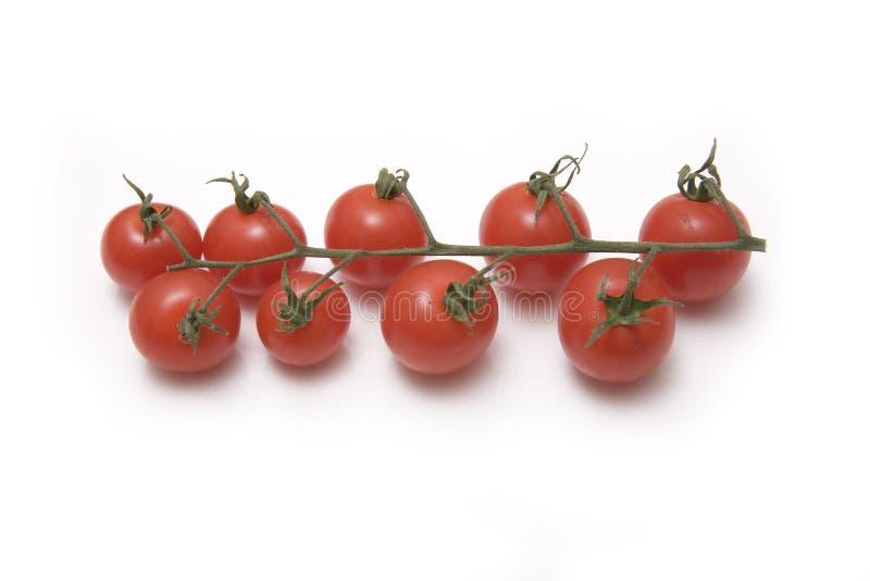 De tomaten van de kers royalty-vrije stock fotografie