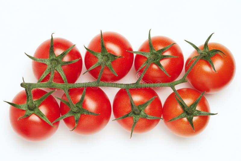 De tomaten van de kers op witte achtergrond royalty-vrije stock foto