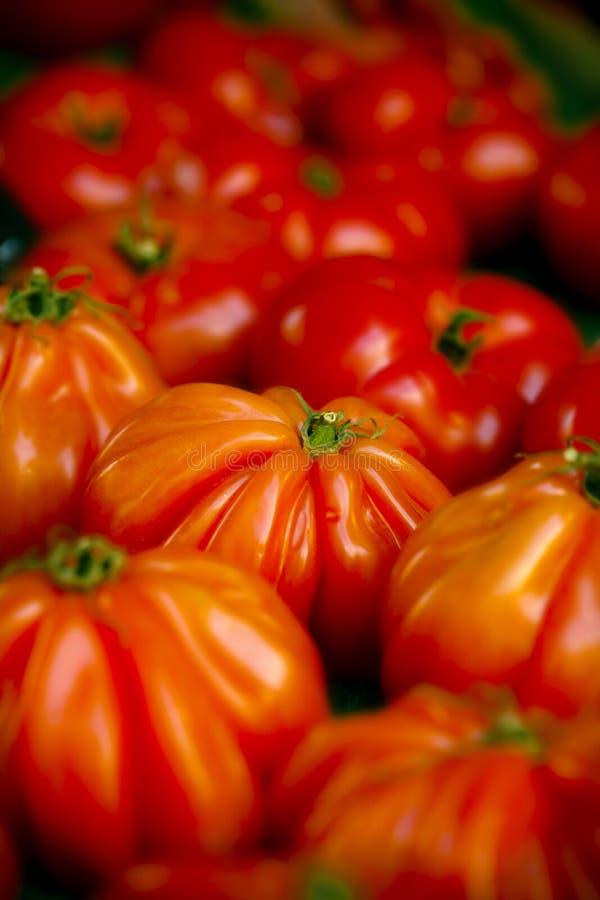 De tomaten van het erfgoed stock foto's
