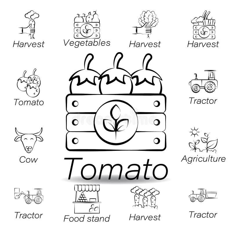 De tomatenhand trekt pictogram Element van de landbouw van illustratiepictogrammen De tekens en de symbolen kunnen voor Web, embl royalty-vrije illustratie