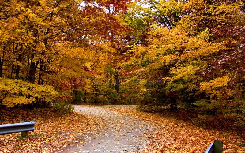 De toneel aandrijving van de Herfst stock afbeeldingen