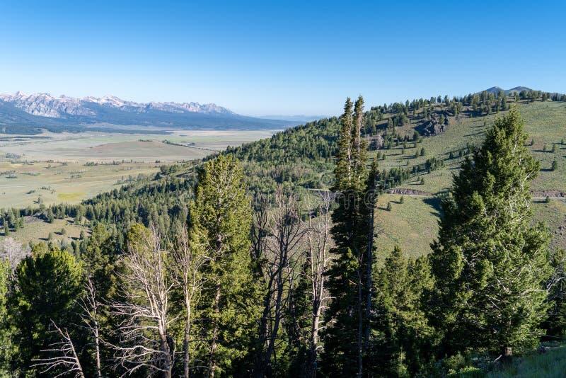 De toneelmening van de bergrand op een duidelijke zonnige dag in Frank Church Wilderness van de Zaagtandbergen in Idaho royalty-vrije stock afbeelding
