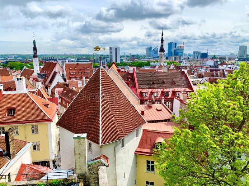 De toneelmening van Tallinn Betegelende oranje daken stock afbeeldingen