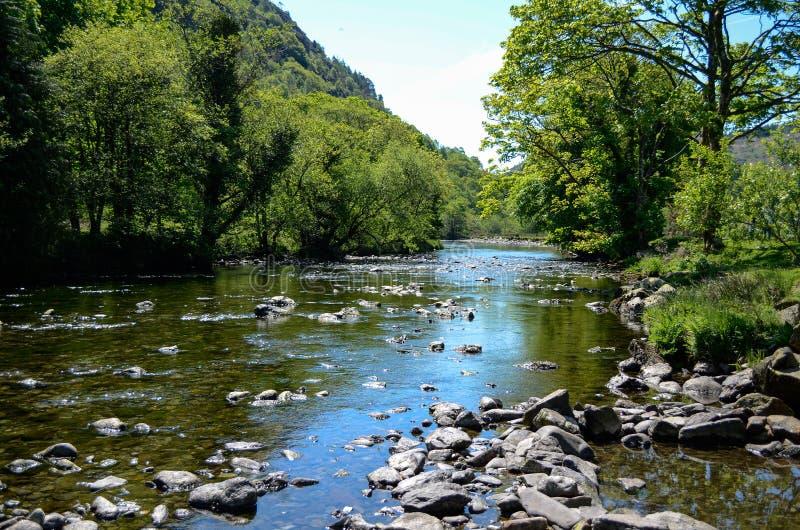 De toneelzon stak mening langs een kalme rivier aan die tussen kleine rotsen tussen bomen stromen royalty-vrije stock afbeeldingen