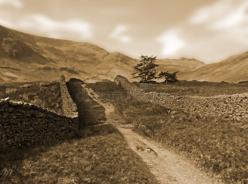 De toonLandschap van Cepia in Yorkshire Dallen royalty-vrije stock foto
