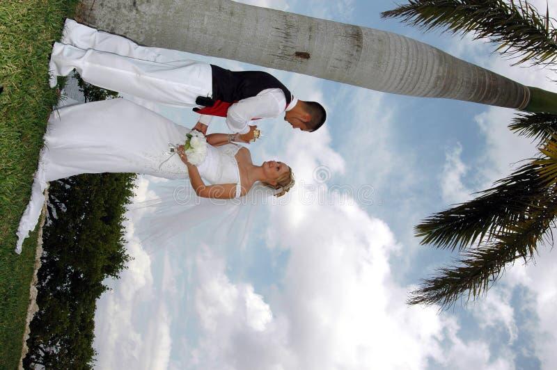 De toost van de bruid en van de bruidegom stock fotografie