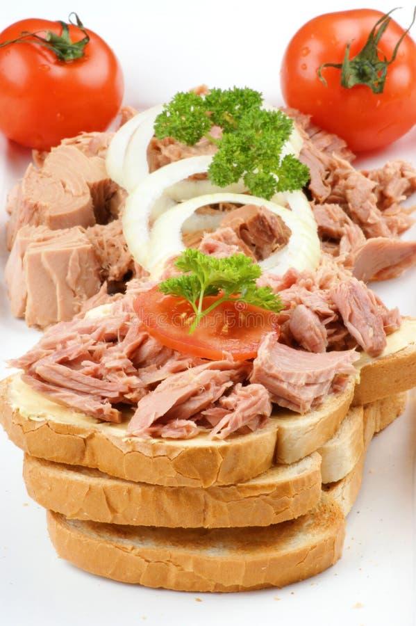 De toost van de tonijn met tomaat stock afbeeldingen