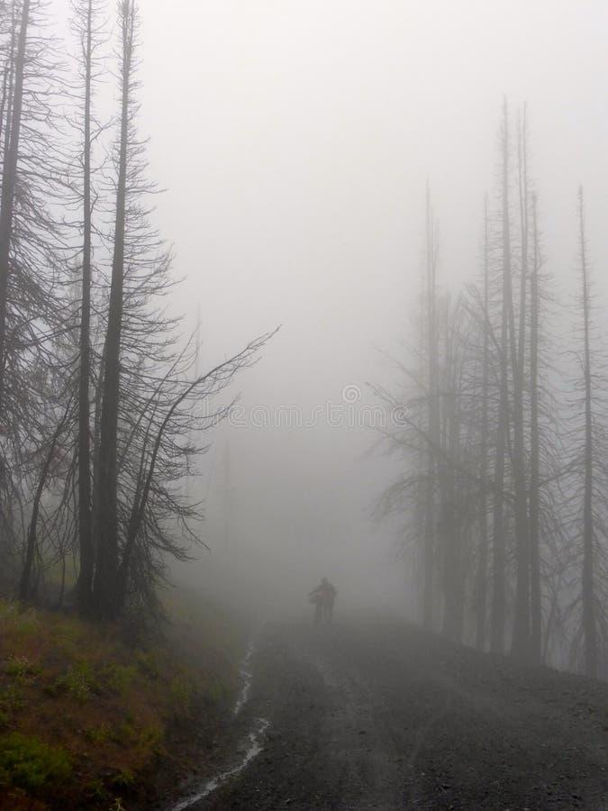 De Top van Bikepackingsdollarhide, de bergen van Idaho Sawthooth stock foto